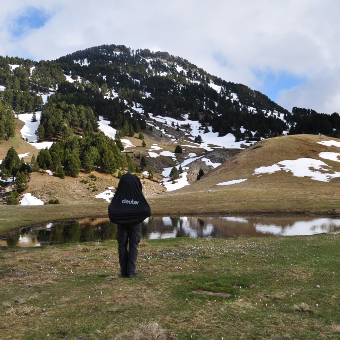 Auf dem Plateau angekommen- Vercors (Mai 2014)