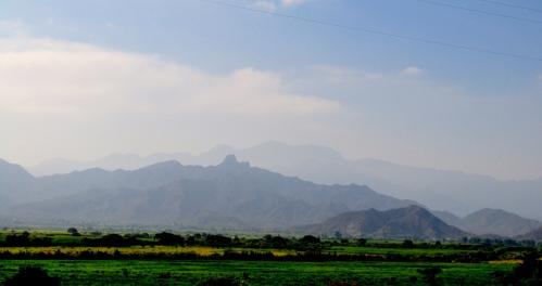 Felder - nahe Patapo